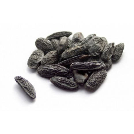 Tonka Beans Absolute  50% in DEP